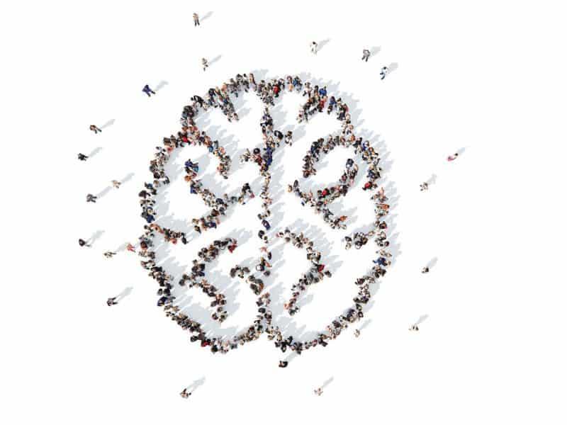 Brain intelligence collective en entreprise